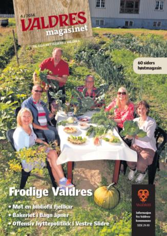 Valdresmagasinet - Utgave 4 2014